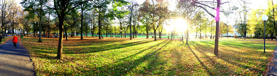 Panorama mit dem iPhone 5 am Hofgarten in Bonn
